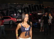 hot import night girls - miami-121493