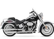 indian chief-278977