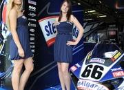 miss yamaha racing 2009 picture gallery-330108