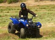 yamaha grizzly 125 automatic-422185