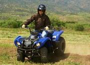 yamaha grizzly 125 automatic-422191