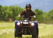 yamaha grizzly 125 automatic-422182