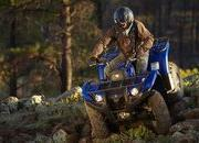 yamaha grizzly 450 auto. 4x4 eps-421806